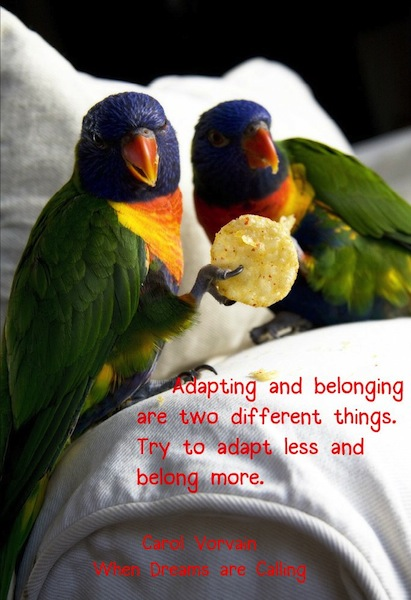 Adapting and belonging are two different things. Try to adapt less and belong more.